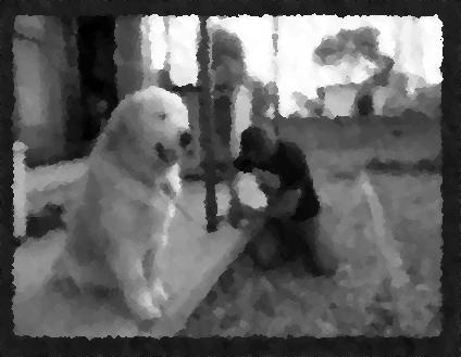 【不思議な話】こんなデカい犬と遭遇したらビビってしまう・・・・